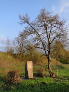 Пам'ятник Іванові Нечаю в Красниставі. Фото Юрія Гаврилюка